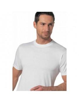 T-shirt uomo Nottingham girocollo cotone